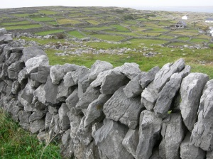 Dry stone wall landscape in the Aran Isles, Ireland. (Source: Gavin Rose, http://www.gavinrose.freeservers.com/index.html)