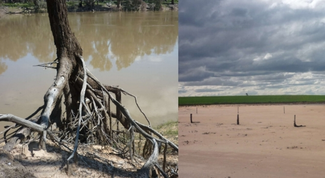A tree hangs on for dear life to the eroding river banks (left); barren salt pans (right) are caused by over-extraction of water and too many shallow-rooted crops, like the ones growing in the background.
