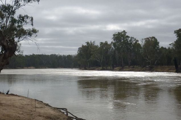 The mighty Murray River.