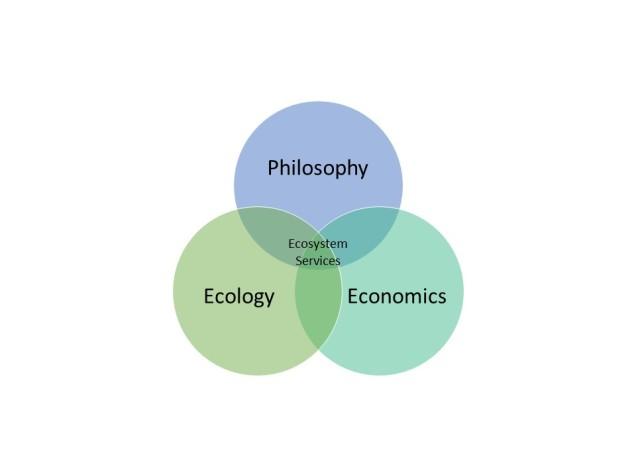 ES diagram